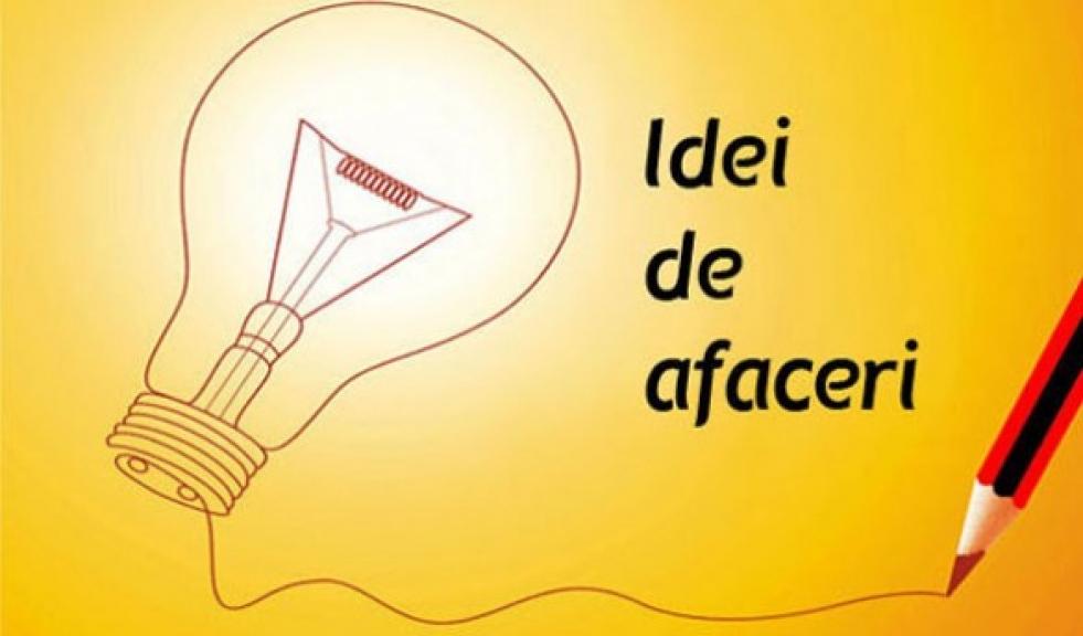 idei de câștiguri de afaceri pe internet