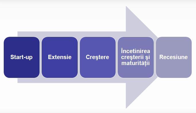 etapele-ciclului-de-viata-a-companiilor