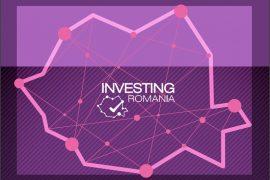 Ghidul Investitorului Străin