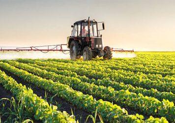 agricultura-356x250.jpg